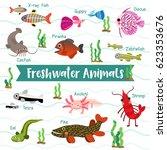 freshwater creature cartoon on... | Shutterstock .eps vector #623353676