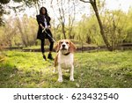 Stock photo african american woman walking dog 623432540