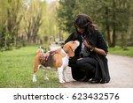 Stock photo african american woman walking dog 623432576