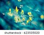 natural blured jasmine leaves... | Shutterstock . vector #623535020