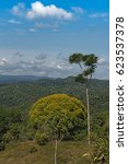 landscape of piedras blancas...   Shutterstock . vector #623537378