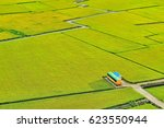country road around rice field...   Shutterstock . vector #623550944