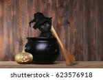 Stock photo cute kitten dressed as a halloween witch with hat and broom in cauldron 623576918