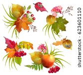 autumn watercolor collection of ... | Shutterstock . vector #623601110