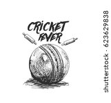 cricket ball with bell freehand ... | Shutterstock .eps vector #623629838