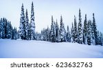 Snow Covered Trees Under Blue...