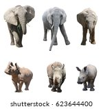 the various postures of the... | Shutterstock . vector #623644400