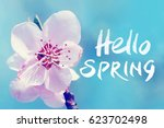beautiful white flower on a... | Shutterstock . vector #623702498