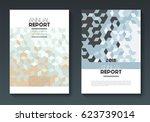 vector annual report templates  ... | Shutterstock .eps vector #623739014