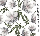 seamless pattern with anemones... | Shutterstock . vector #623772113