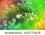 colorful spring blurred... | Shutterstock . vector #623772629