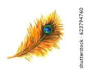 peacock feather. watercolor... | Shutterstock . vector #623794760