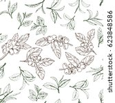seamless pattern with leaves... | Shutterstock .eps vector #623848586