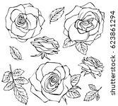 sketch rose flower set. pencil... | Shutterstock . vector #623861294