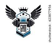 sport logo for weightlifting... | Shutterstock . vector #623877956