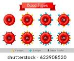 set of blood cells types.... | Shutterstock .eps vector #623908520