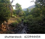 beautiful stream in the forest...   Shutterstock . vector #623944454