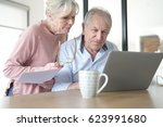 senior couple at home connected ... | Shutterstock . vector #623991680
