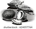 exotic fruit  coconut  cocoa.   Shutterstock .eps vector #624057764