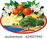 oval frame with citrus grove... | Shutterstock .eps vector #624057944