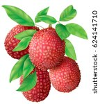 bunch of lychee fruits and... | Shutterstock .eps vector #624141710