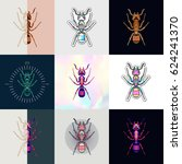 set of ant logos. abstract... | Shutterstock .eps vector #624241370