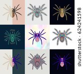 set of spider logos. abstract... | Shutterstock .eps vector #624241598