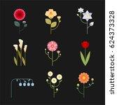 simple various kind flower... | Shutterstock .eps vector #624373328
