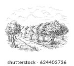 orange   orange tree orange... | Shutterstock .eps vector #624403736