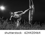 black and white shot of a... | Shutterstock . vector #624420464