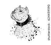 a beautiful pit bull. vector... | Shutterstock .eps vector #624459590