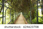 beautiful tree tunnel over the... | Shutterstock . vector #624623708