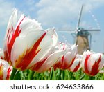 close up on beautiful white and ... | Shutterstock . vector #624633866