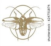 beetle   Shutterstock .eps vector #624751874