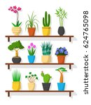 set of small plants on shelf ... | Shutterstock .eps vector #624765098