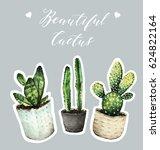cactus in pots. watercolor...   Shutterstock . vector #624822164