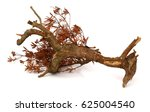 dead tree isolated on white... | Shutterstock . vector #625004540