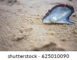 Pearl On Sand Beach Background...