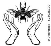 human hands hold a mystical bug.... | Shutterstock .eps vector #625026170