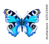 beautiful blue butterfly ... | Shutterstock . vector #625115444