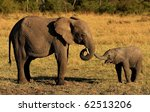 Stock photo elephant mother and baby 62513206
