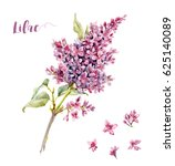 watercolor floral set of a... | Shutterstock . vector #625140089