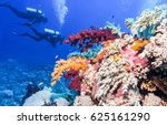underwater coral reef diving... | Shutterstock . vector #625161290
