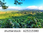 view of a coffee plantation... | Shutterstock . vector #625215380