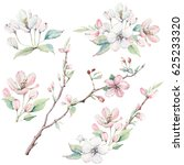 hand drawn apple tree branches... | Shutterstock . vector #625233320