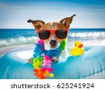 jack russel dog resting and... | Shutterstock . vector #625241924