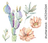 hand drawn watercolor saguaro... | Shutterstock . vector #625244264