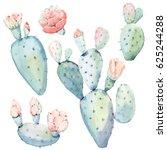 hand drawn watercolor saguaro... | Shutterstock . vector #625244288
