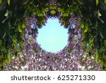 spring flowers  wisteria | Shutterstock . vector #625271330
