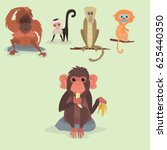 Different Monkey Characters ...